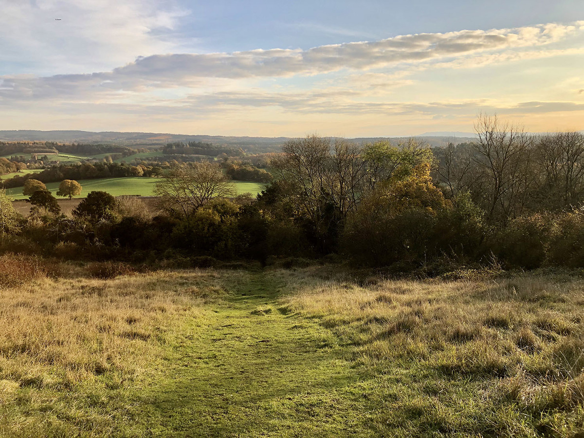 Surrey Hills location for family photo shoot